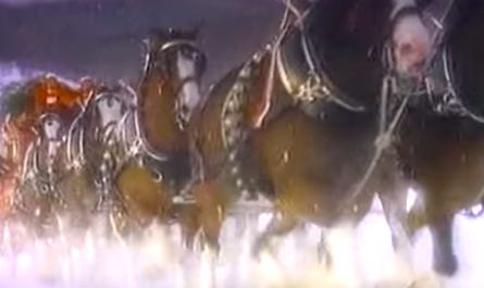 Clydesdale Xmas TV Clip From 1987 Has Lots Of Holiday Magic.