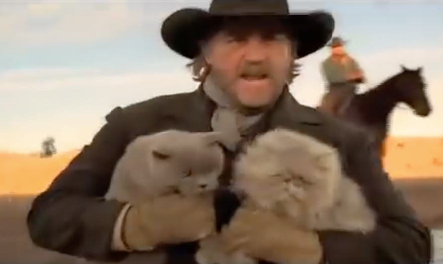Cowboys Herding Cats Clip Creates A Well-Spent Minute Of The Day